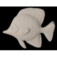 Fish cm 15