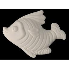 Fish cm 13